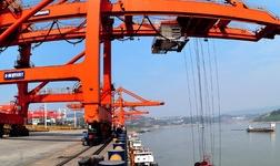 张家港国检完成港务码头第150艘船铁矿检验