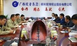江苏省南通市海安国家级开发区领导来访柳铝