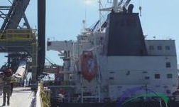 酒钢牙买加阿尔帕特氧化铝厂首船氧化铝启航