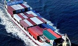 海关总署:严厉打击洋垃圾、象牙及其制品走私