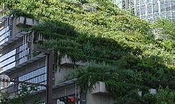 规范湖北节能门窗市场  建筑节能门窗专委会将成立