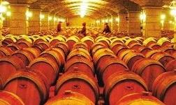 酒钢将建设牙买加国际产业园