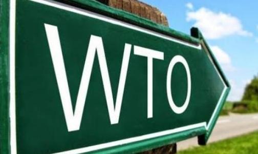 中国、欧盟等成员向WTO提交联合提案推动尽快启动上诉机构成员遴选