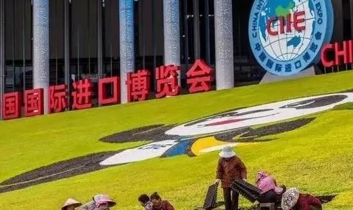 进口商品让生活更多彩 ――首届中国国际进口博览会开馆见闻