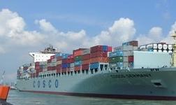 BIMCO:贸易战将损害全球航运业