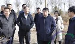 霍林郭勒市委副书记、政府市长张鸿福实地调研霍煤碳素项目选址和煤炭仓储场所集中整治工作