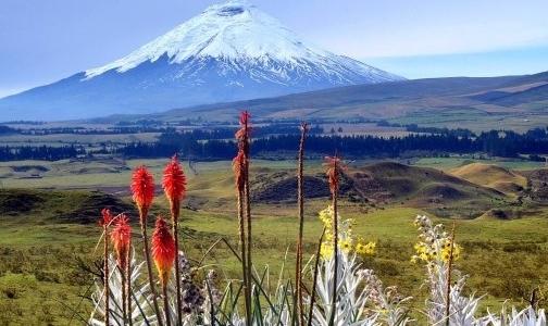 厄瓜多尔矿业改革 利好Lumina Gold公司矿业项目发展