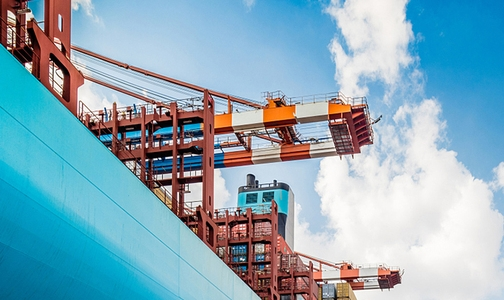 中铝山西新材料有限公司:强化项目引领 助推高质量发展