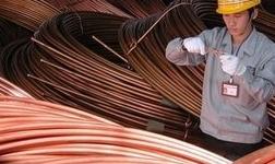 杨军调研金威铜业公司:千方百计提高产量质量 打赢扭亏脱困攻坚战