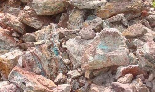 云铜股份与自由港公司商谈进口铜精矿贸易合作