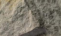 国务院点赞平果铝土矿采矿临时用地改革成果