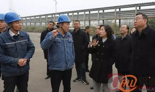 南川区委书记丁中平一行调研水江氧化铝公司
