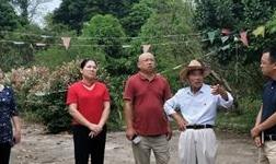 新华社广西分社调研组到平果县调研采访