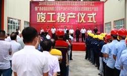 平果县举行2019年第四季度稳投资补短板重大项目集中开竣工仪式