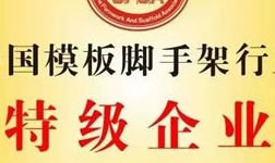 """华铝模板荣获""""中国模板脚手架行业特级企业"""""""