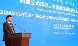 山东魏桥创业集团未来的发展方向