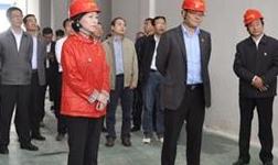 希望铜箔项目早投产、早见效