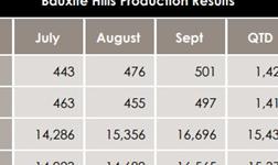 麦德龙矿业第三季度铝土矿产量强劲 今年有望实现年度产量目标