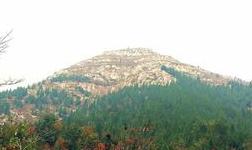 山东将环境改善纳入衡量新旧动能转换的成效指标