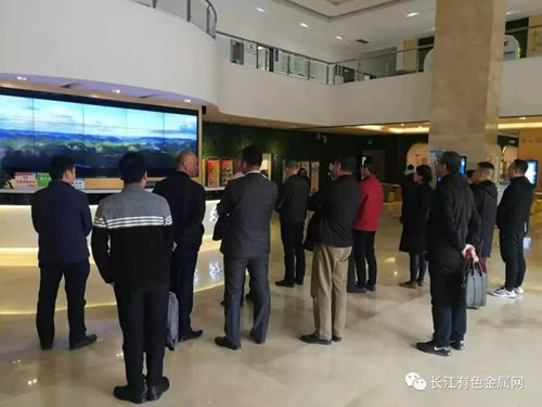 長江有色鋁產業商務考察團抵達德保工業區馬隘鋁產業園參觀考察