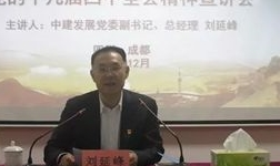 刘延峰到中建铝宣讲党的十九届四中全会精神并开展安全检查