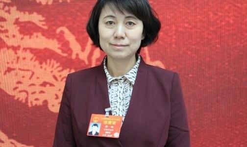 杨艳代表:进一步加大对镍钴资源综合利用的支持力度