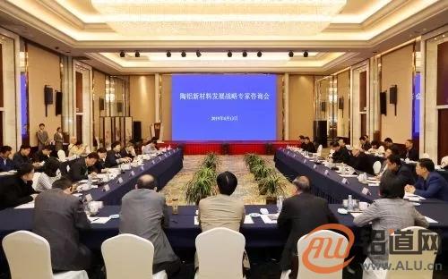 陶铝新材料发展战略专家咨询会议在淮召开