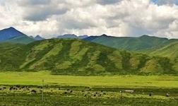 """矿山生态修复的""""四大法宝"""" ――中国地质调查局成都矿产综合利用研究所探索矿山地质环境恢复和综合治理高效之路"""