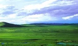 内蒙古一季度黑色金属冶炼加工业增加值同比增长16.3%