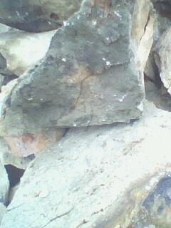 印度的气候情况对其铝土矿产量、出口量的影响