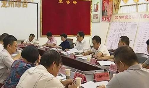 龙州县召开生态氧化铝项目推进会