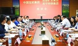 西部矿业与中国宝武集团举行座谈