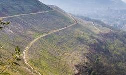 刚果的手工矿商将注意力从钴转向铜