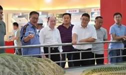 山東省鋁工業考察團來蘭鋁公司進行參觀考察
