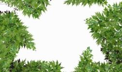 生态环境部、商务部等15部门:今年发布回收铜、回收铝原料产品质量标准 推进国内固废回收利用