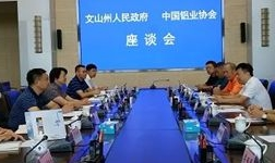 中国铝业协会与云南文山州人民政府 工作座谈会在州政府举行