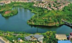 重慶九龍坡獲批有色材料國家外貿轉型升級基地