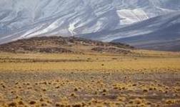 智利私营铜生产商年产能将从430万吨扩大到730万吨