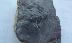New Century三季度鋅精礦產量計劃提升至2.3-2.9萬噸