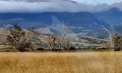 智利国铜发行债券进行矿山升级 预计今年产量为180万吨