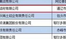 2019内蒙古民营企业100强榜单发布,锦联入榜第八位!