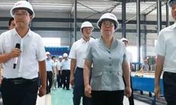 荆州市党政代表团调研监利铝产业