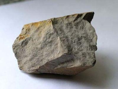 几内亚2020年铝土矿出口总量预计将超1亿吨