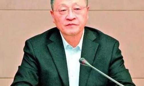 葛红林任中国有色金属工业协会党委书记 2个月前从中铝卸任