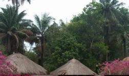 几内亚博法铝土矿项目按计划稳步推进