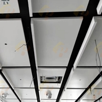 瑞榈定制异形铝单板吊顶