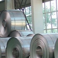 廠家直銷LY6鋁卷供應商