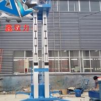 16米升降机  酒店专用多柱式升降机