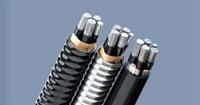 鋁合金電纜--YJHLV22