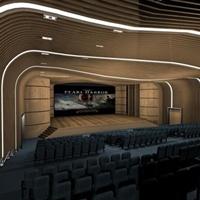 电影院波浪形铝方通工程装饰案例